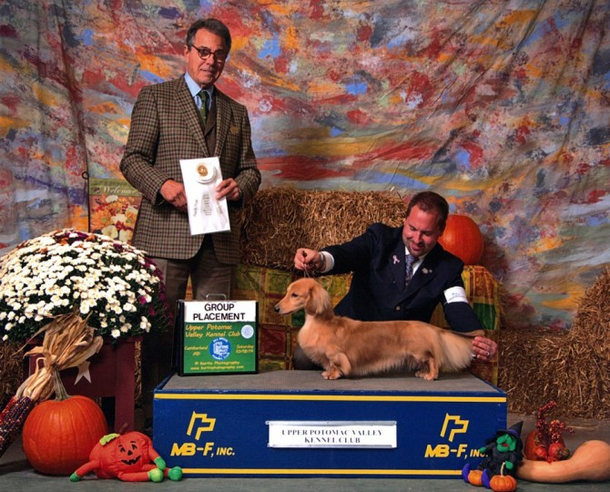 Olivia Finishes in 2013 TOP 10 National Dachshund Jr Handlers
