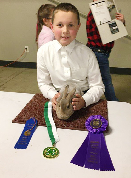Ignatius and Mini Rex Rabbit are 4-H Champions