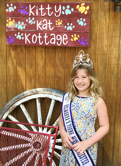 Young Miss Dorchester Serenity Loves to Help Cats